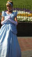 Cinderella by MizLou