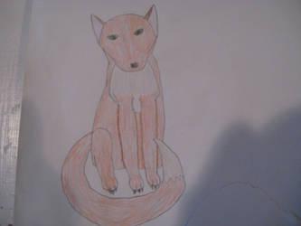 Fox by CatalogCats