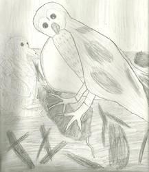 Owls by CatalogCats