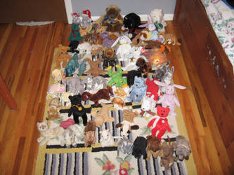 Beanie Baby Collection by CatalogCats