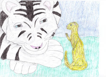 Tiger and Ferret by CatalogCats
