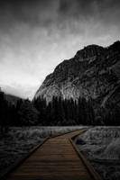 This Is My Path by o0oLUXo0o