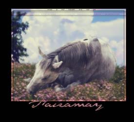 Fairamay by Bitter-x-Dreams