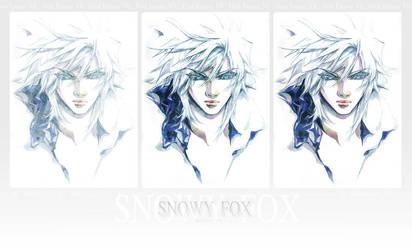 Steps: Snowy Fox by STECHA191