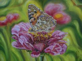 Spring abundance by OlgaLola