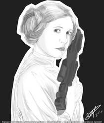 Princess Leia - Star Wars by RGDopico