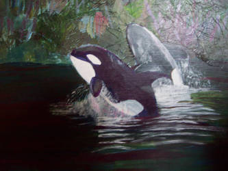 Arcylic Painting of Orca's by Donniesgirl