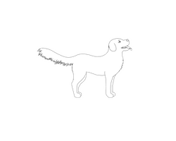 Dog Lineart Large/Flop-ear/Long-fur/Male by renllaw
