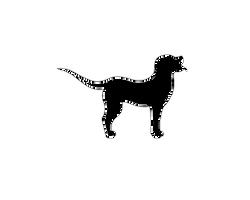 Dog Lineart Large/Flop-ear/short-fur/Female by renllaw
