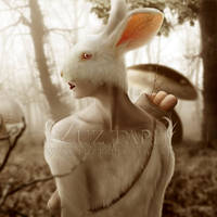 01- Dreamy Bunny in the Mushroom Forest by LuzTapia