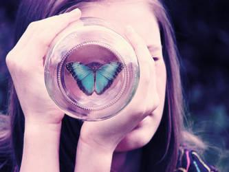 butterfly eye by paintedpoppy
