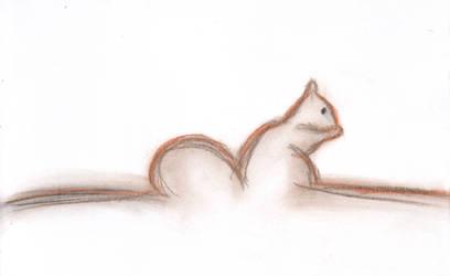 Hint of a Squirrel by Ariyenne
