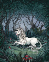 The Unicorn by Evanira