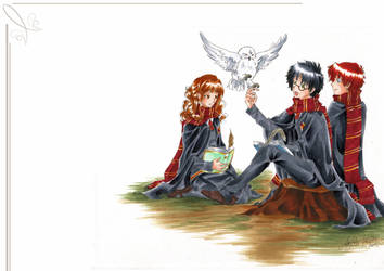 _HP:Harry Ron and Hermione_ by Aeris1990