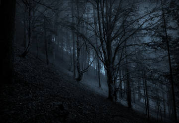 Through Moonlit Realms of Spirits Old by Yesterdawn