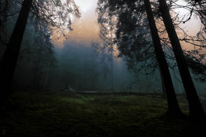Where Spirits Dwell by Yesterdawn