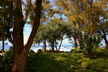 Ua Ola Loko I Ke Aloha by Yesterdawn