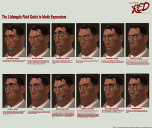 The Facial Field Guide by Liquidsilk