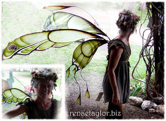 wings 11 by AvantFae