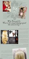 Wig Tutorial: 1 high ponytail by nekomiKasai