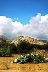 PLACES : Greece : Crete : Heraklion : Amoudara by fantasmica