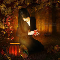 Autumn Evening by SilentPlea