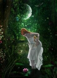 Midsummer's Eve by SilentPlea
