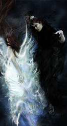 Yin Yang by SilentPlea