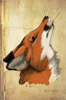 Red Fox by Grion