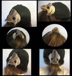 Wallago attu Fish Head Hair Piece by systemcat