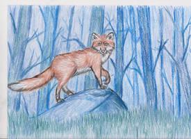 The Blue Woods by ArcticIceWolf