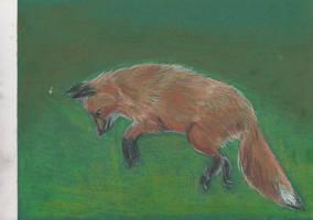 Mousehunter by ArcticIceWolf