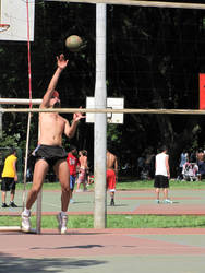 Static Sports II: Volleyball by Calcobrinus