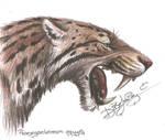 Promegantereon ogygia [PROGRESS PIX INCLUDED] by Jei-Dinofelini