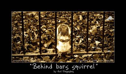 Behind bars squirrel by koltregaskes