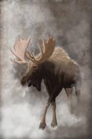 Gold King, Winter throne v2 by Midnight-Sun-Art