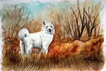 Hunting Fields by Midnight-Sun-Art
