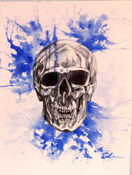 Skull Study by Midnight-Sun-Art