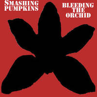 SP Bleeding The Orchid Single by CreamCrazy