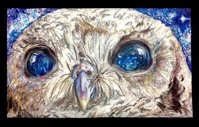 Starry Eyed by FlutinoCockatiel