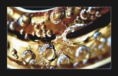 Drops of Life by dilekt