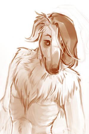 Arkady the Borzoi Dog by fralea