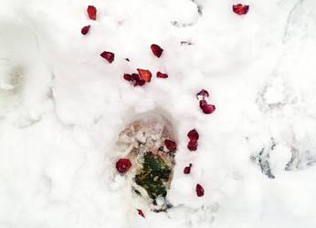 footprint: sign of spring by akito-ash