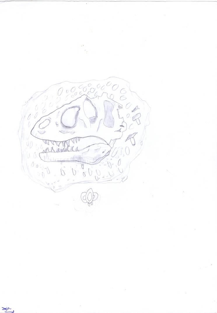 Allosaurs Skull by EragonShadeSlayers