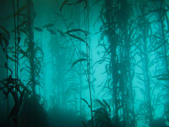 Kelp Forest 2 by Exodus5139