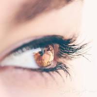 [11/30] - Glassy by Sarah-BK