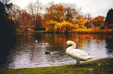 An Autumn Day By The Lake by Sarah-BK