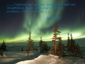 Agalloch The Wildernesss by ImmortalSymbolicJas