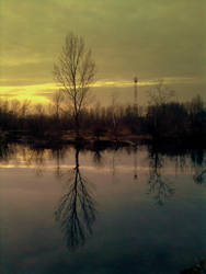 Life of Tree by Lurvig01