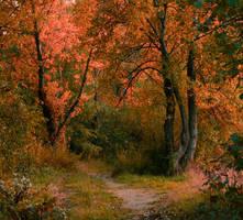 Peaceful Autumn Symphony by Lurvig01